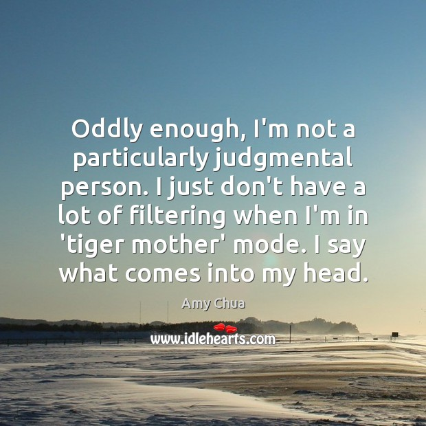 Oddly enough, I'm not a particularly judgmental person. I just don't have Amy Chua Picture Quote