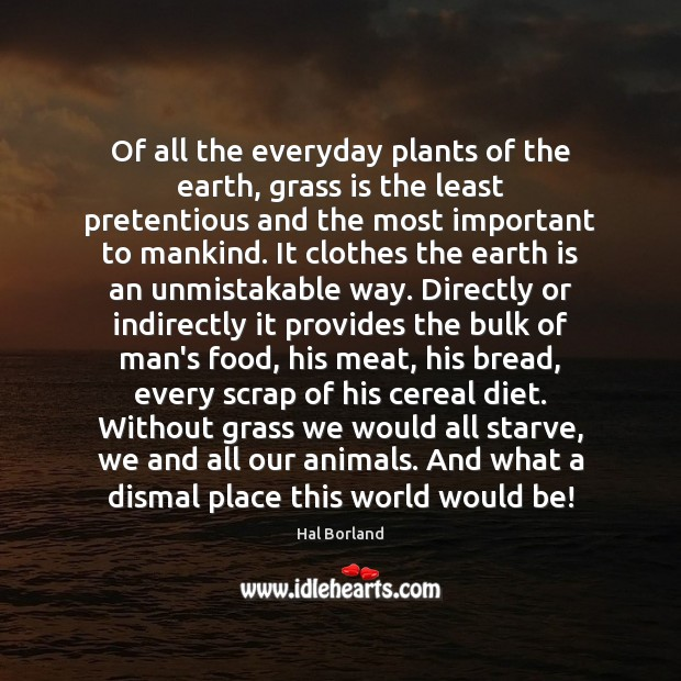 Of all the everyday plants of the earth, grass is the least Image