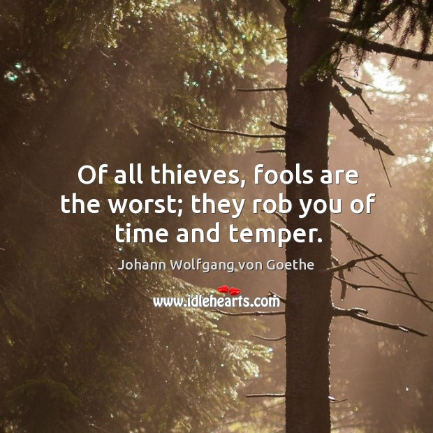 Of all thieves, fools are the worst; they rob you of time and temper. Image