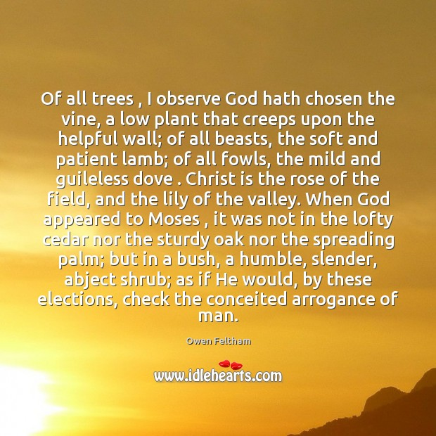 Of all trees , I observe God hath chosen the vine, a low Owen Feltham Picture Quote