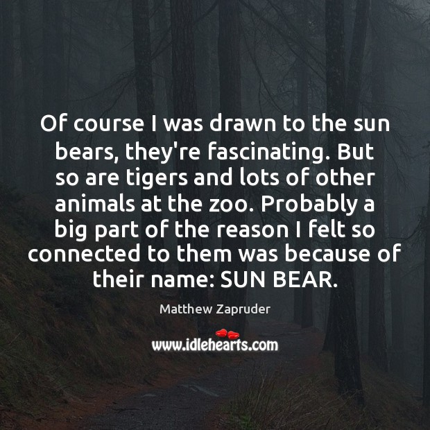 Image, Of course I was drawn to the sun bears, they're fascinating. But