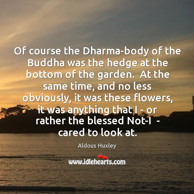 Image, Of course the Dharma-body of the Buddha was the hedge at the