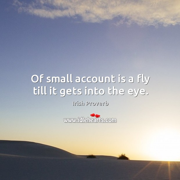 Image, Of small account is a fly till it gets into the eye.