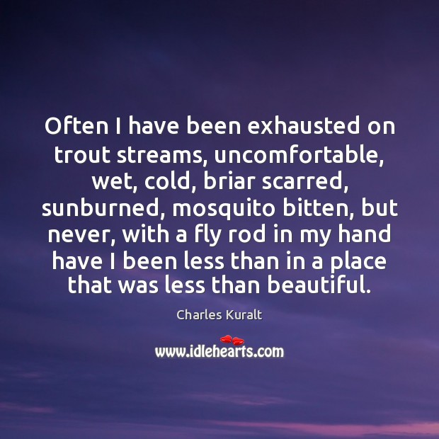 Often I have been exhausted on trout streams, uncomfortable, wet, cold, briar Charles Kuralt Picture Quote