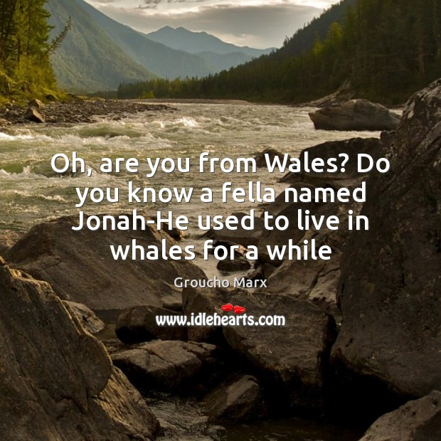 Image, Oh, are you from Wales? Do you know a fella named Jonah-He