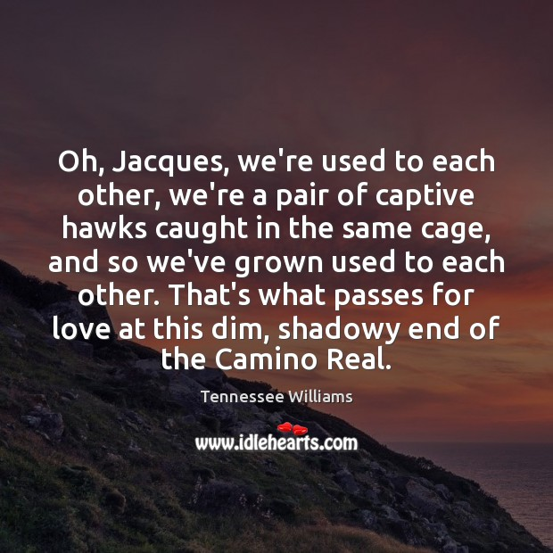 Oh, Jacques, we're used to each other, we're a pair of captive Tennessee Williams Picture Quote