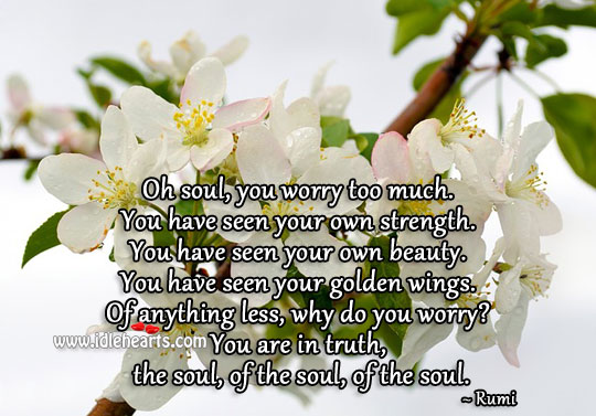 Image, Oh soul, you worry too much.