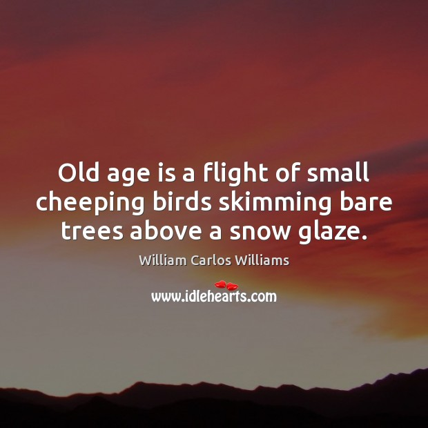 Image, Old age is a flight of small cheeping birds skimming bare trees above a snow glaze.