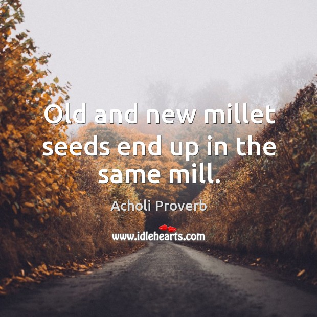 Old and new millet seeds end up in the same mill. Acholi Proverbs Image