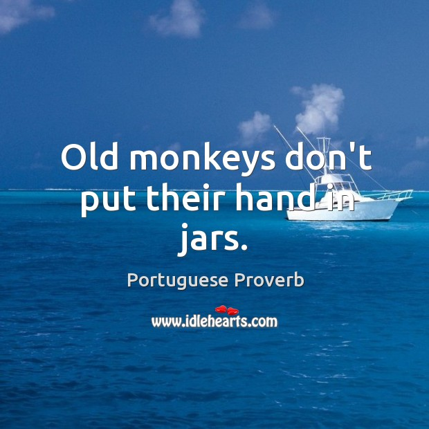 Old monkeys don't put their hand in jars. Image