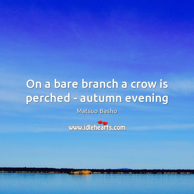 Image, On a bare branch a crow is perched – autumn evening