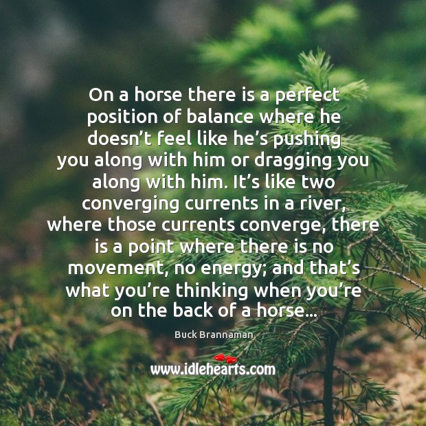 Image about On a horse there is a perfect position of balance where he
