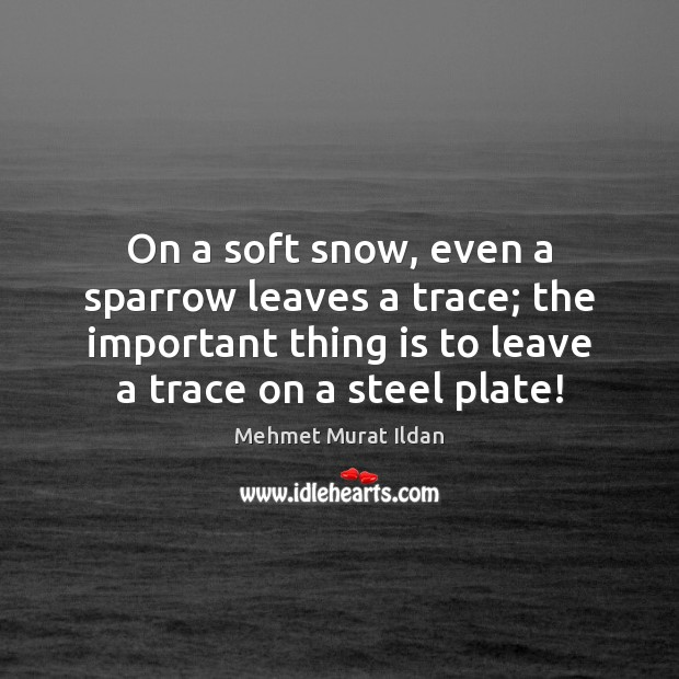 Image, On a soft snow, even a sparrow leaves a trace; the important