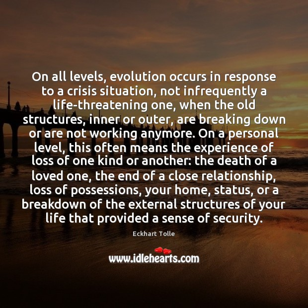 Image, On all levels, evolution occurs in response to a crisis situation, not