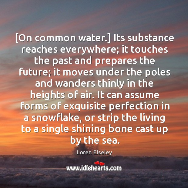 [On common water.] Its substance reaches everywhere; it touches the past and Loren Eiseley Picture Quote