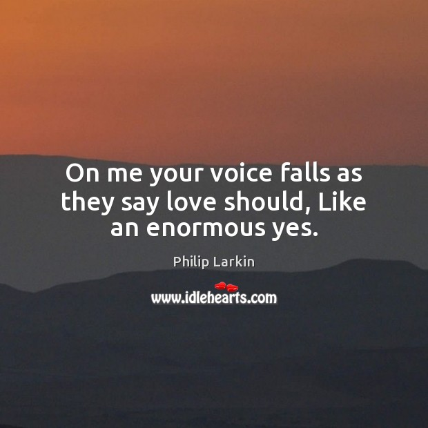 On me your voice falls as they say love should, Like an enormous yes. Philip Larkin Picture Quote