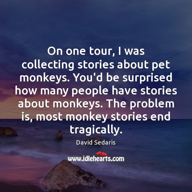 On one tour, I was collecting stories about pet monkeys. You'd be Image