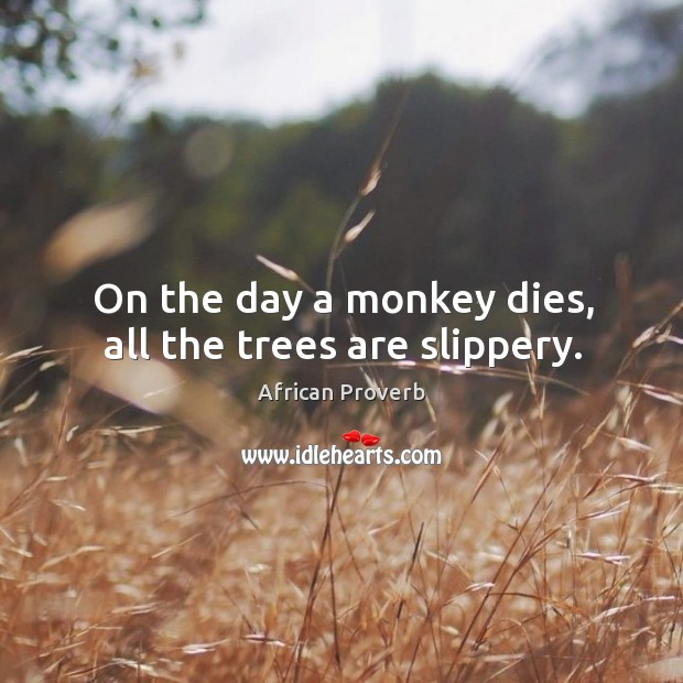 Image, On the day a monkey dies, all the trees are slippery.