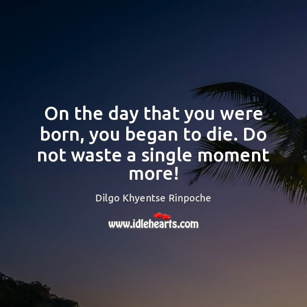 On the day that you were born, you began to die. Do not waste a single moment more! Dilgo Khyentse Rinpoche Picture Quote