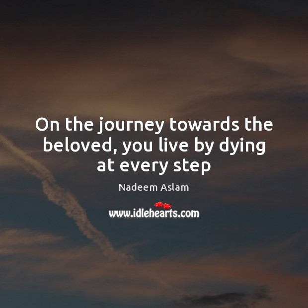 Picture Quote by Nadeem Aslam