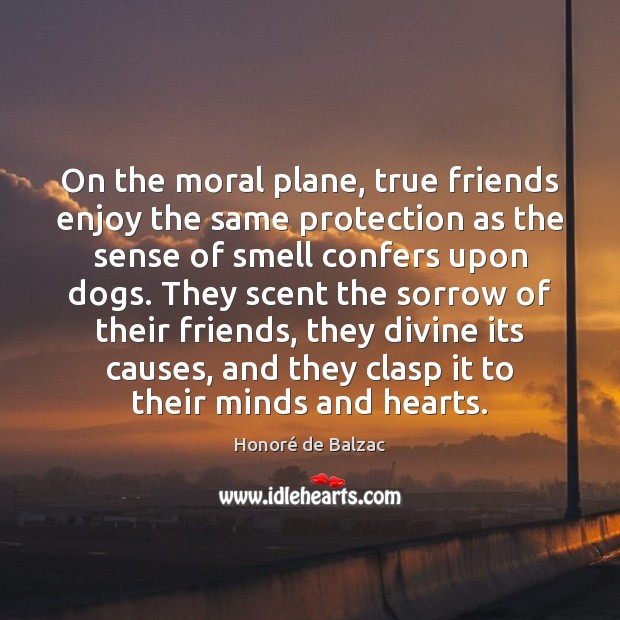 Image, On the moral plane, true friends enjoy the same protection as the