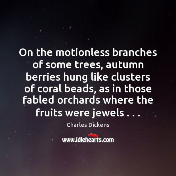 Image, On the motionless branches of some trees, autumn berries hung like clusters