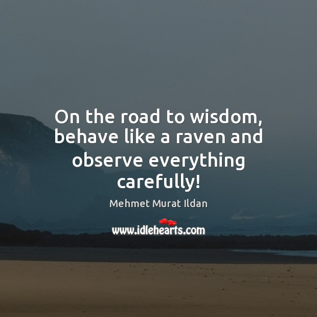 On the road to wisdom, behave like a raven and observe everything carefully! Mehmet Murat Ildan Picture Quote