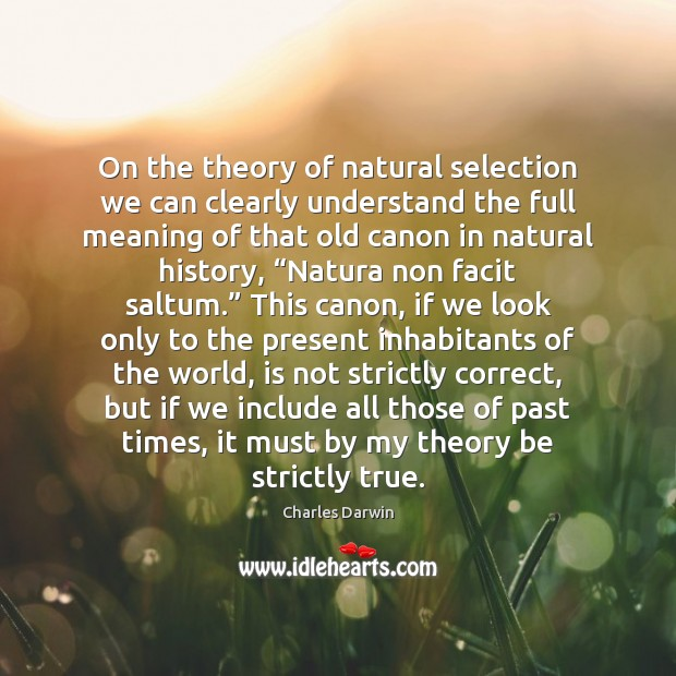 On the theory of natural selection we can clearly understand the full Charles Darwin Picture Quote