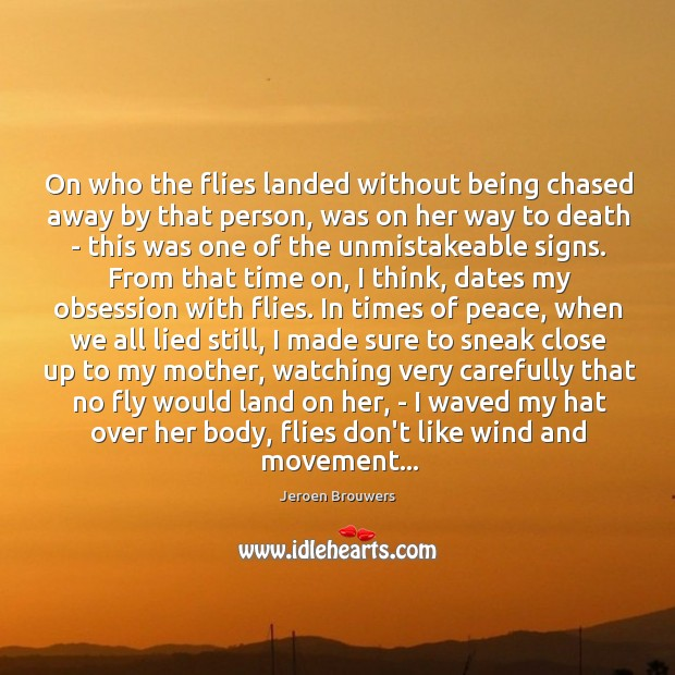 On who the flies landed without being chased away by that person, Image