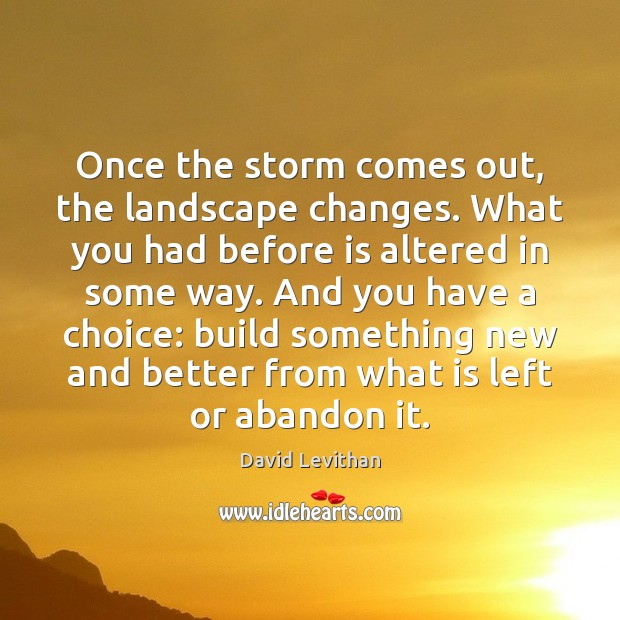 Once the storm comes out, the landscape changes. What you had before David Levithan Picture Quote