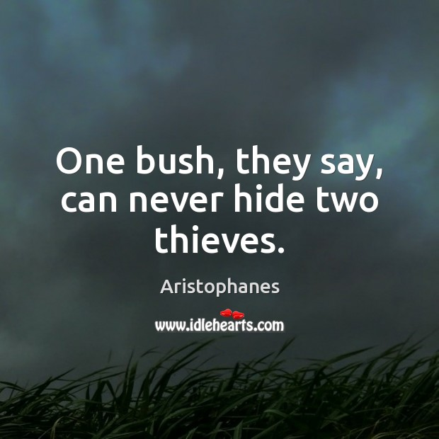 Image, One bush, they say, can never hide two thieves.