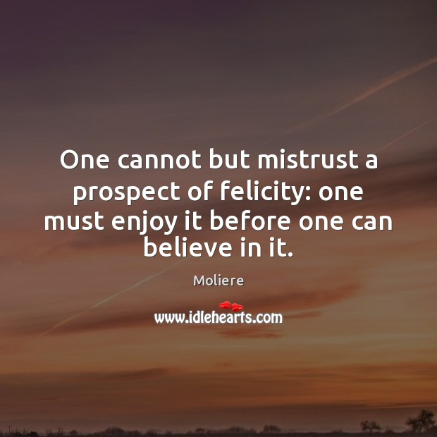 One cannot but mistrust a prospect of felicity: one must enjoy it Image