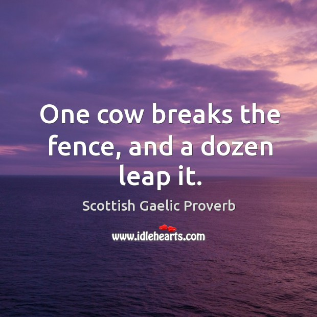 Image, One cow breaks the fence, and a dozen leap it.