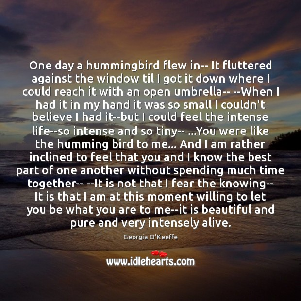 One day a hummingbird flew in– It fluttered against the window til Time Together Quotes Image