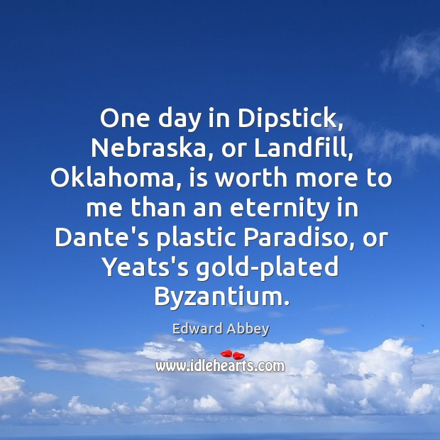 One day in Dipstick, Nebraska, or Landfill, Oklahoma, is worth more to Image