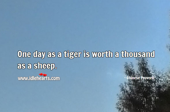One day as a tiger is worth a thousand as a sheep. Image