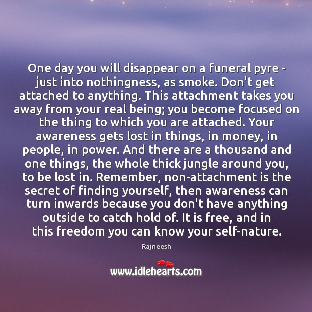 One day you will disappear on a funeral pyre – just into Image