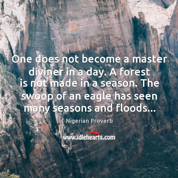Image, One does not become a master diviner in a day.