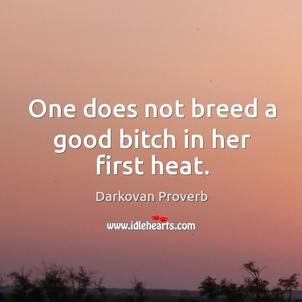One does not breed a good bitch in her first heat. Darkovan Proverbs Image