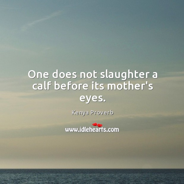 One does not slaughter a calf before its mother's eyes. Kenya Proverbs Image