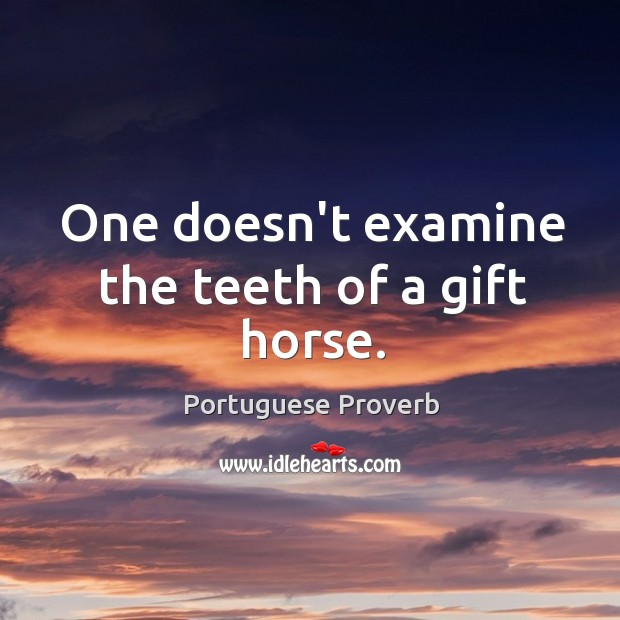 Image, One doesn't examine the teeth of a gift horse.