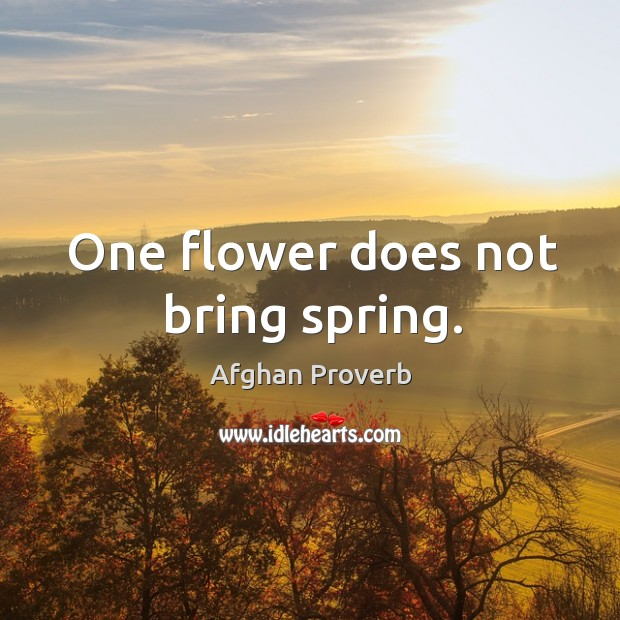 One flower does not bring spring. Afghan Proverbs Image