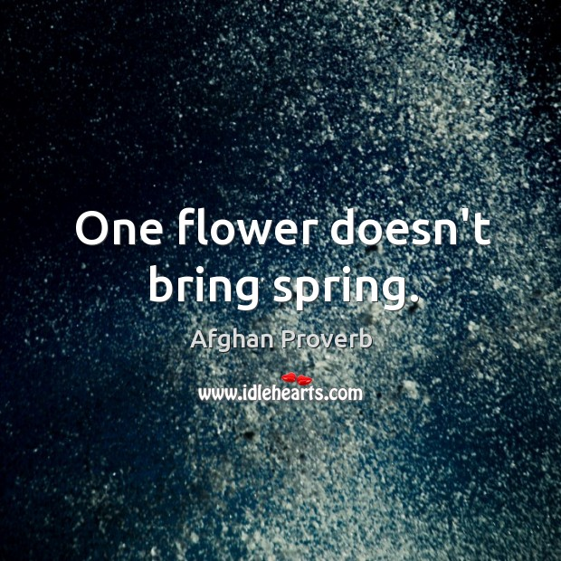 One flower doesn't bring spring. Afghan Proverbs Image