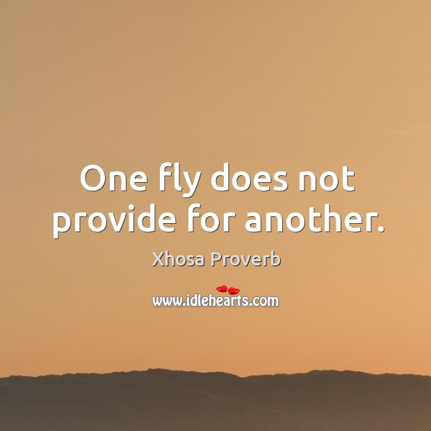 Image, One fly does not provide for another.