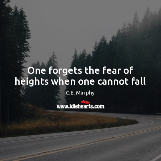 Image, One forgets the fear of heights when one cannot fall