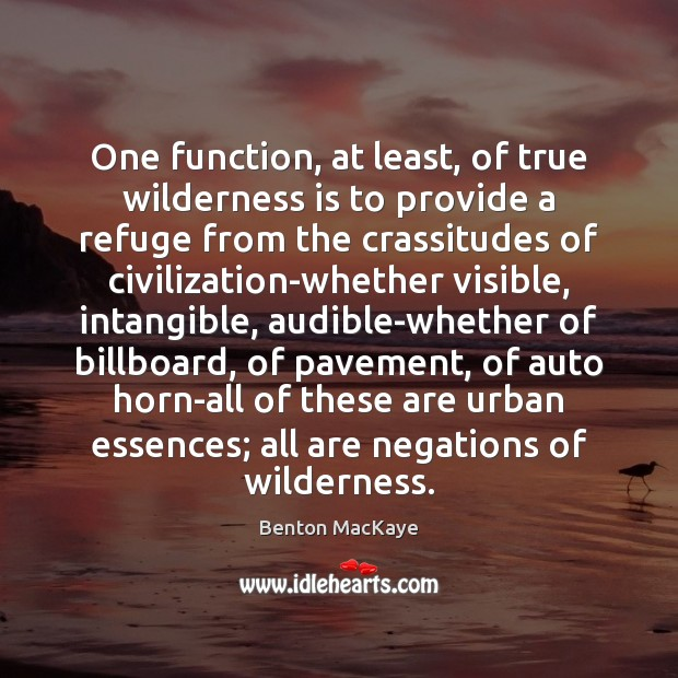 Image, One function, at least, of true wilderness is to provide a refuge