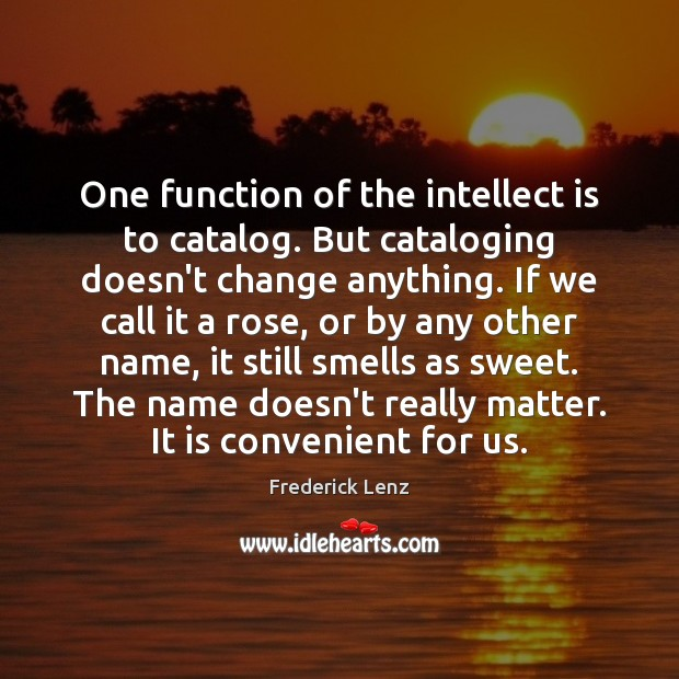 One function of the intellect is to catalog. But cataloging doesn't change Image