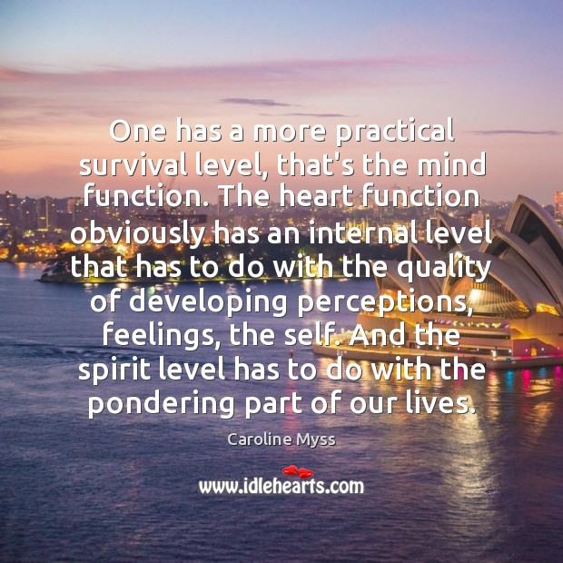 One has a more practical survival level, that's the mind function. The Caroline Myss Picture Quote