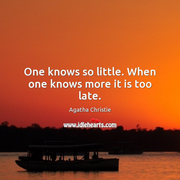 Image, One knows so little. When one knows more it is too late.