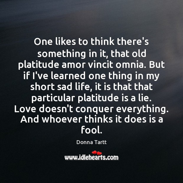 One likes to think there's something in it, that old platitude amor Donna Tartt Picture Quote